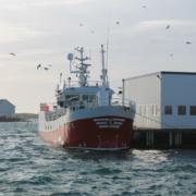 Havstjerna - Røst 2016