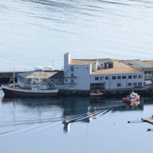 Havstjerna Eigedom - Iglandsvik Næringspark
